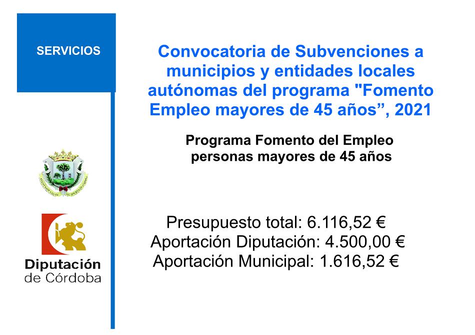 """Convocatoria de Subvenciones a municipios y entidades locales autónomas del programa """"Fomento Empleo mayores de 45 años"""""""